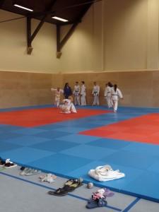 Judo in der Turnhalle Georg-Schumann-Straße
