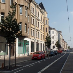 Neue Straßenbäume an der Georg-Schumann-Straße